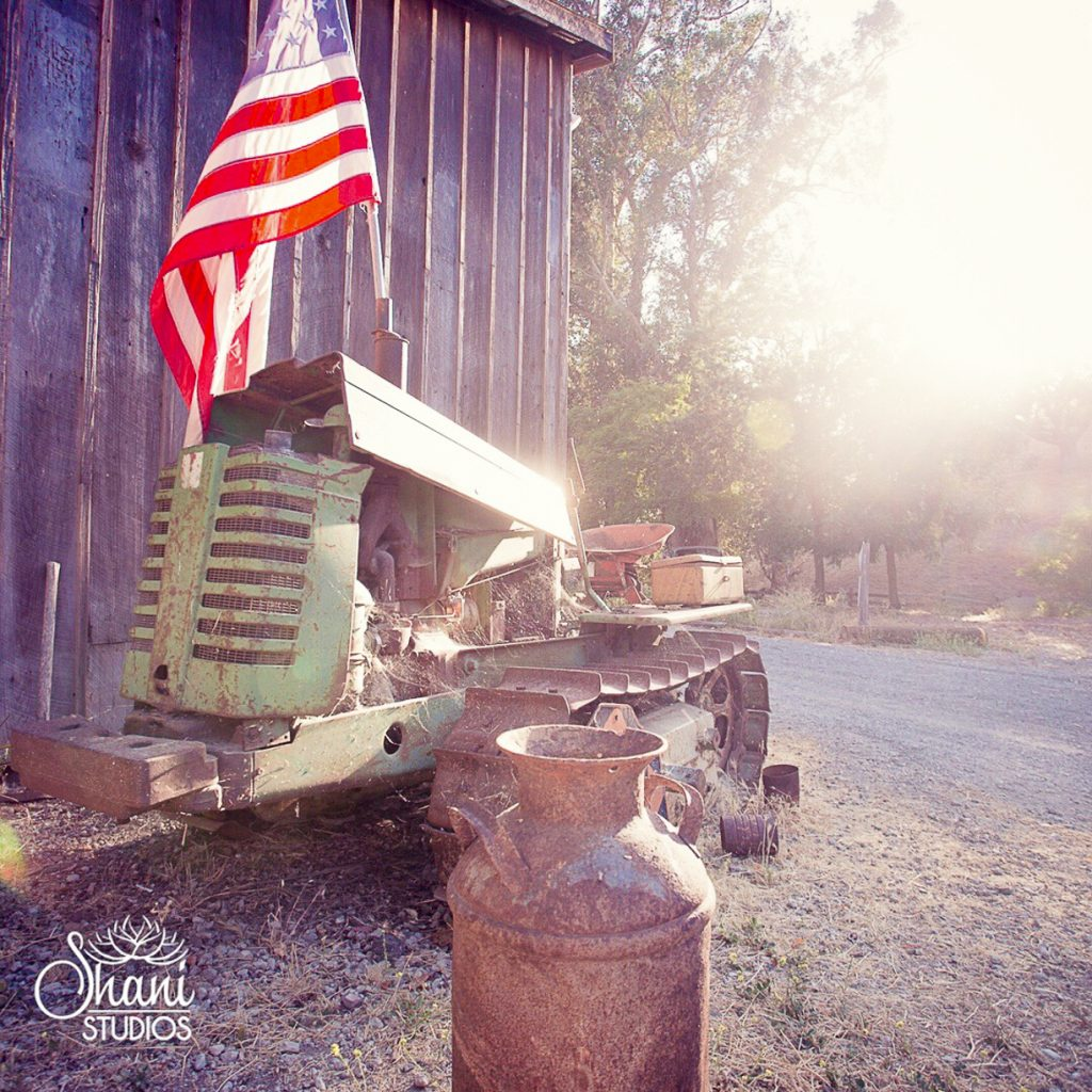 Shani Studios - Tractor and American Flag